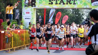 Safari Zoo Run 2012: Go Wild