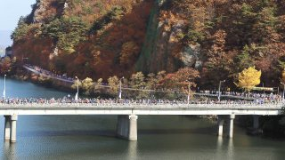 Race Away to South Korea: The Ultimate Mix of Sports & Tourism
