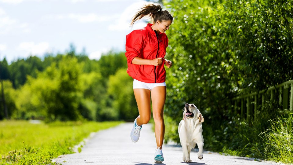 Doesn't Your Canine Buddy Deserve a Great Run, Too?