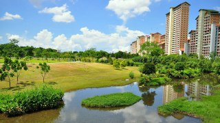 Rehabilitated Canal and Drainage Paths Every Singapore Runner Should Know About