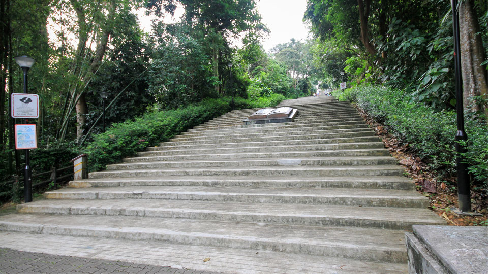 Are These The Most Dangerous Places To Run in Singapore?