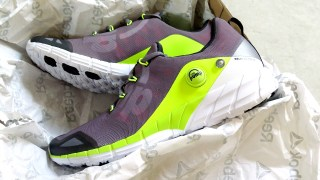 I Kill Two Birds with One Stone with Reebok ZPump Fusion 2.0 Men's Running Shoes