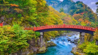 Improve Your Brain and Body Running the First-Ever Nikko 100km Ultramarathon, Japan