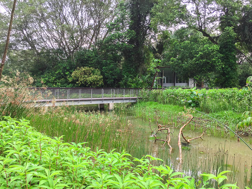 Things to Do at Windsor Nature Park