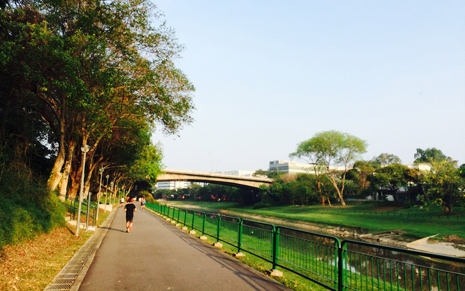 Singapore's Top 10 Running Routes: Where to Run in Singapore