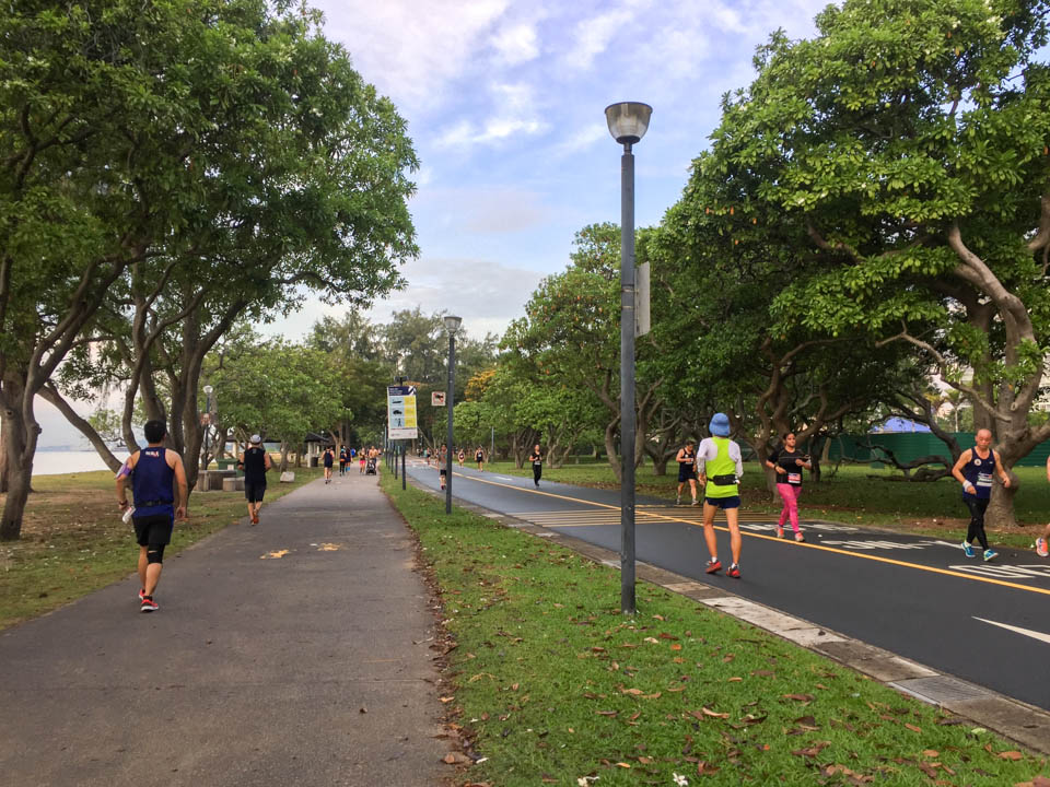 CSC Run by the Bay 2017 Review