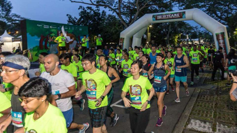 Safari Zoo Run 2018 Race Results Are Available!