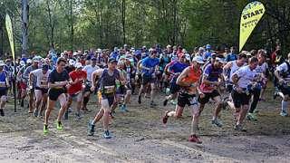 Running Wild NSW
