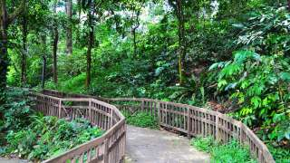 7 Singapore Running Parks In The Central