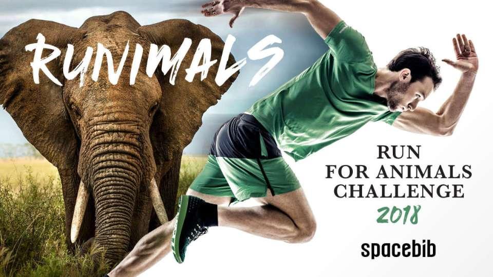 Run For Animals Challenge 2018