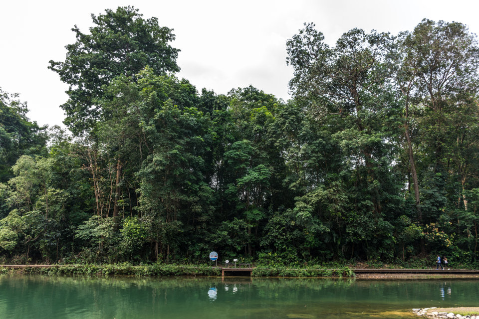 Singapore New Trail: 36km Trail Linking Jurong Lake Gardens to Coney Island Park
