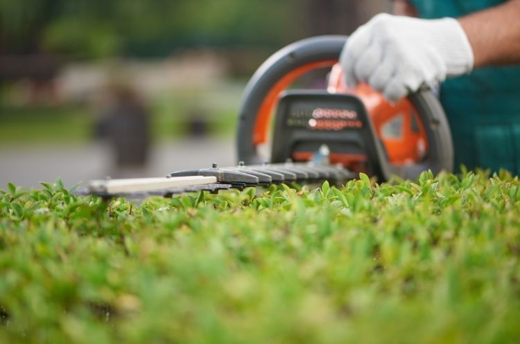 Cost-Saving Strategies for Your Landscaping Business