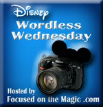 Wordless Wesnesday: #DisneySide Letter 'S'