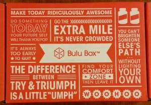 Bulu Box Review – January's Products