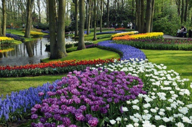 حديقة كيوكينهوف أجمل حديقة في العالم 4
