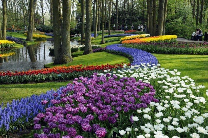 حديقة كيوكنهوف أجمل حديقة في العالم 3