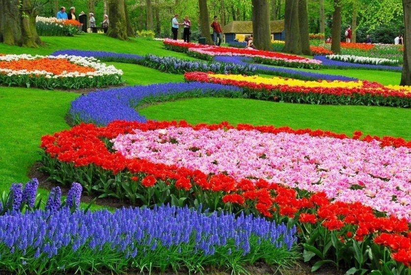 حديقة كيوكينهوف أجمل حديقة في العالم 6