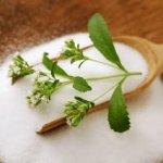 فوائد ومخاطر نبات صبار الألوفيرا ( Aloe Vera ) 4