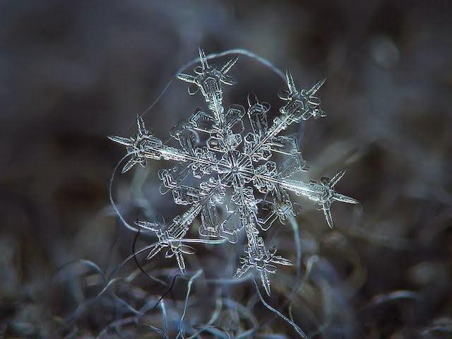 شاهد روعة بلورات الجليد تحت المجهر 2