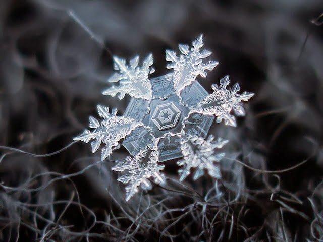 شاهد روعة بلورات الجليد تحت المجهر 1