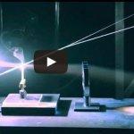 فيديو : شاهد كيف تم برمجة هذة الفئران لتصبح آداة قتل بضغطة زر ! 3