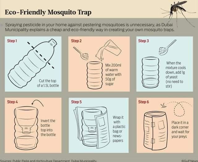 التخلص من الناموس ( البعوض ) بطريقة طبيعية فعالة و آمنة علي الأطفال و الكبار