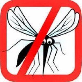 التخلص من الناموس ( البعوض ) بطريقة طبيعية فعالة و آمنة 1