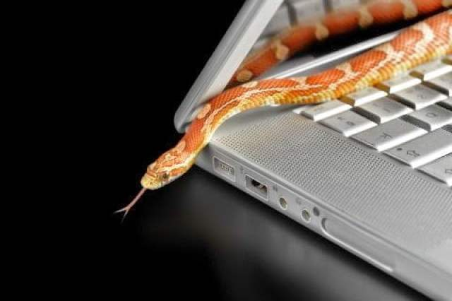 الوصايا العشر للحماية من جرائم النصب الإلكتروني ! 3