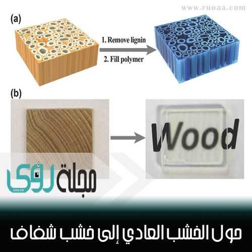 اصنع بنفسك : حول الخشب العادي إلى خشب شفاف ؟! 7