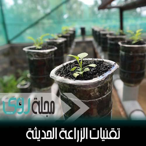 تقنيات الزراعة بدون تربة : الهيدروبونيك - الأيروبونيك - الأكوابونيك 1