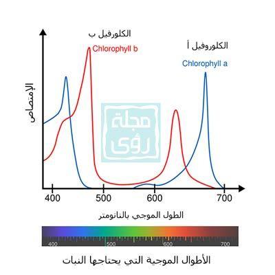اعلى امتصاص للضوء من النيات يحدث ضمن نطاق الضوء الأحمر و الأزرق