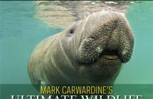Mark Carwardine