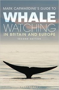 News-MC-WhaleWatching