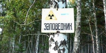 Die verstrahlte Region gilt in Russland als Naturschutzgebiet. Bild: Ecodefense/Heinrich Boell Stiftung Russia/Slapovskaya/Nikulina [Attribution], via Wikimedia Commons