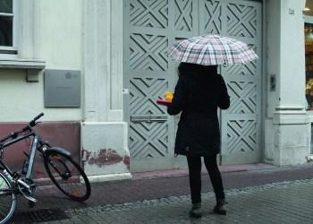 Lässt das ZSL seine Mitarbeiter im Regen stehen? Foto: Niklas Hauck