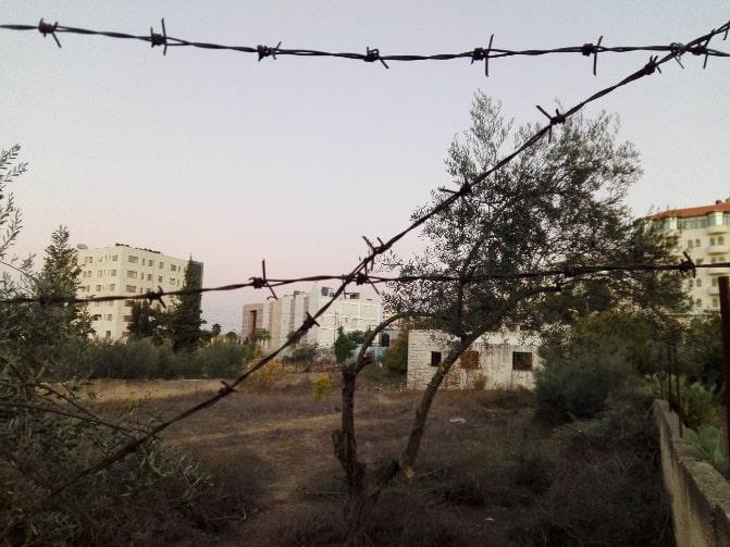 Zäune und Stacheldraht – bittere Realität im Nahostkonflikt. Foto: Eylül Tufan