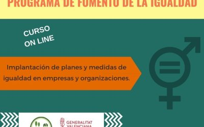 MATRÍCULA CERRADA – Curso online: Implantación de planes y medidas de igualdad en empresas y organizaciones