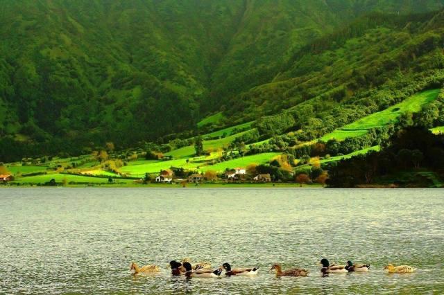 Lagoa das Sete Cidades