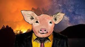pig boy2 -5dde91b5
