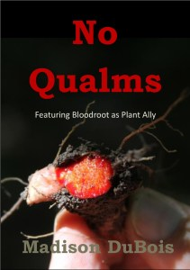 No Qualms by Madison DuBois