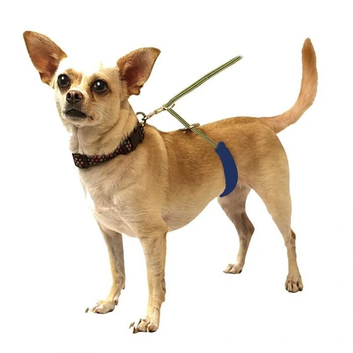 Diy Small Dog Harness Wire Center