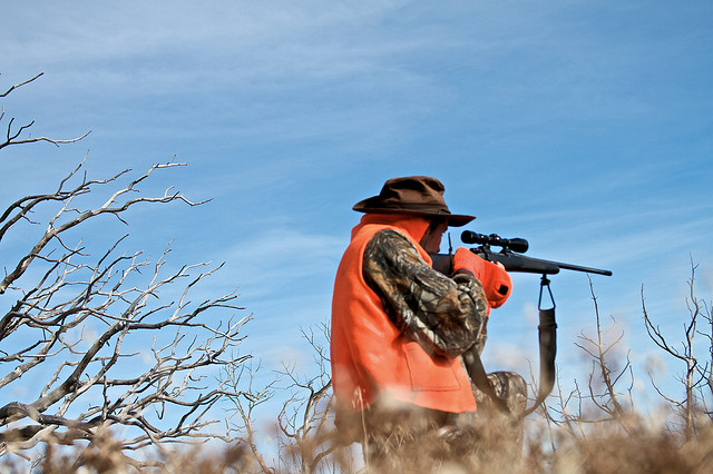 Colorado Parks and Wildlife reminds hunter of leftover limited licenses