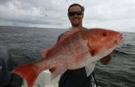 Mahi-Mahi Birthday in Gulf Shores - best of