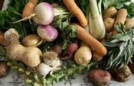 Vegetables Produce Flowers But No Fruit