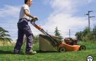Grub Control in Lawns