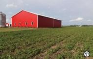 Kansas State University nematologist warns Kansas soybean producers