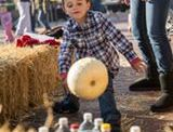 Little River Fall Foliage Festival Scheduled