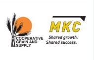 Hillsboro: Cooperative Grain and Supply discuss unification with Mid Kansas Coop