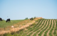 House agriculture bill makes wrong kind of sweeping change