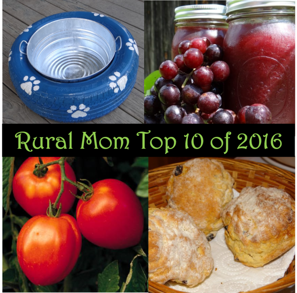 From Instant Pot Recipes to DIY Dog Bowls – Rural Mom Top 10 of 2016